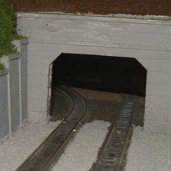 n113-d-t-tunnel-step